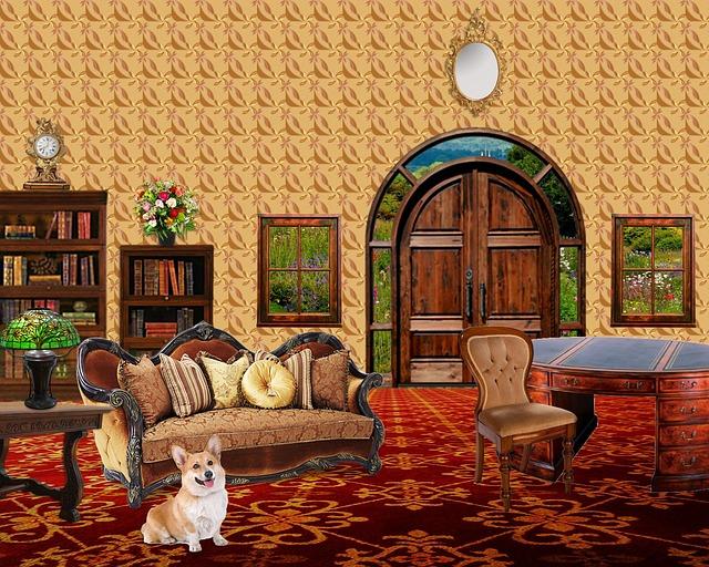 pes u gauče