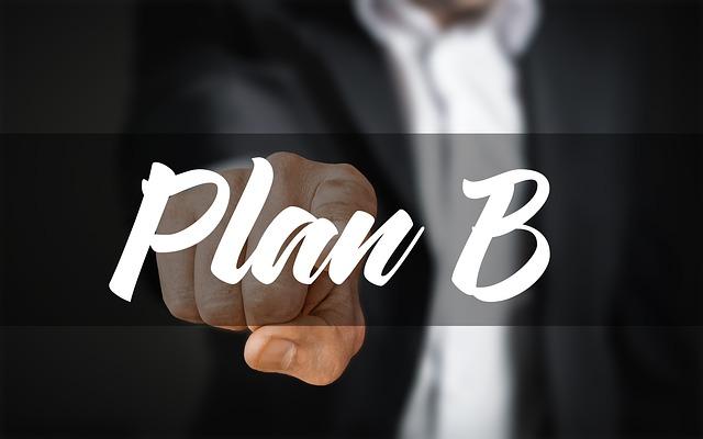 muž s plánem B